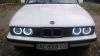 """""""Ангельские глазки"""" CCFL BMW 3 серия кузов E30, 7 серия кузов E32, 5 серия кузов E34 (белые)"""